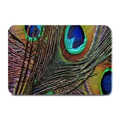 Peacock Feathers Plate Mats by Simbadda