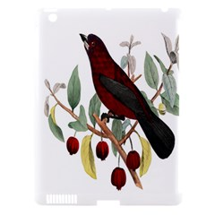 Bird On Branch Illustration Apple Ipad 3/4 Hardshell Case (compatible With Smart Cover) by Amaryn4rt