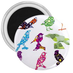 Birds Colorful Floral Funky 3  Magnets by Amaryn4rt