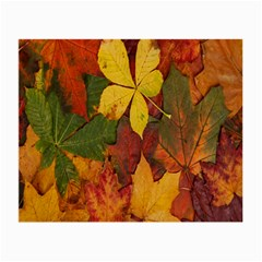 Colorful Autumn Leaves Leaf Background Small Glasses Cloth by Amaryn4rt