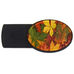 Colorful Autumn Leaves Leaf Background Usb Flash Drive Oval (4 Gb) by Amaryn4rt
