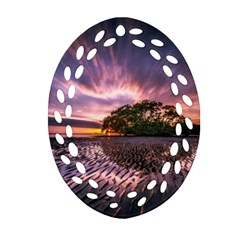 Landscape Reflection Waves Ripples Oval Filigree Ornament (two Sides) by Amaryn4rt