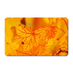 Bright Yellow Autumn Leaves Magnet (rectangular) by Amaryn4rt