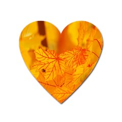 Bright Yellow Autumn Leaves Heart Magnet by Amaryn4rt