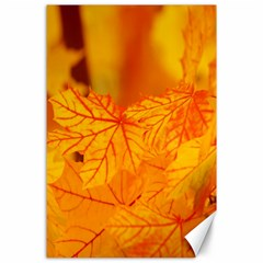 Bright Yellow Autumn Leaves Canvas 24  X 36  by Amaryn4rt