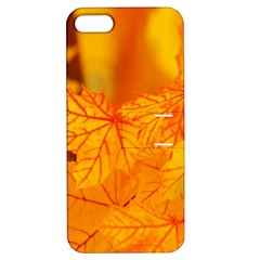Bright Yellow Autumn Leaves Apple Iphone 5 Hardshell Case With Stand by Amaryn4rt