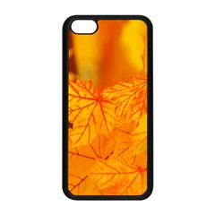 Bright Yellow Autumn Leaves Apple Iphone 5c Seamless Case (black) by Amaryn4rt