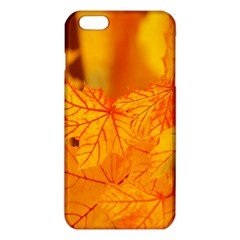 Bright Yellow Autumn Leaves Iphone 6 Plus/6s Plus Tpu Case by Amaryn4rt