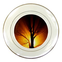 Rays Of Light Tree In Fog At Night Porcelain Plates by Amaryn4rt