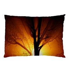Rays Of Light Tree In Fog At Night Pillow Case (two Sides) by Amaryn4rt