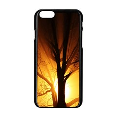 Rays Of Light Tree In Fog At Night Apple Iphone 6/6s Black Enamel Case by Amaryn4rt