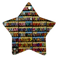 Flower Seeds For Sale At Garden Center Pattern Ornament (star) by Amaryn4rt