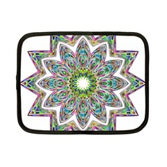 Decorative Ornamental Design Netbook Case (small)  by Amaryn4rt