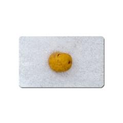 Hintergrund Salzkartoffel Magnet (name Card) by wsfcow