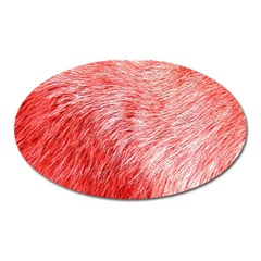 Pink Fur Background Oval Magnet by Simbadda