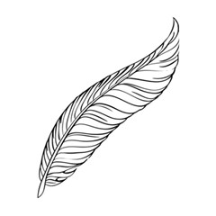 Feather Line Art 5 5  X 8 5  Notebooks by Simbadda