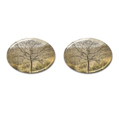 Ceiba Tree At Dry Forest Guayas District   Ecuador Cufflinks (oval) by dflcprints