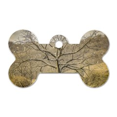 Ceiba Tree At Dry Forest Guayas District   Ecuador Dog Tag Bone (two Sides) by dflcprints