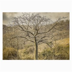 Ceiba Tree At Dry Forest Guayas District   Ecuador Large Glasses Cloth by dflcprints