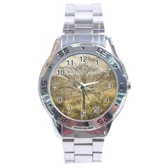 Ceiba Tree At Dry Forest Guayas District   Ecuador Stainless Steel Analogue Watch by dflcprints
