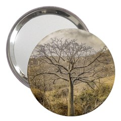 Ceiba Tree At Dry Forest Guayas District   Ecuador 3  Handbag Mirrors by dflcprints