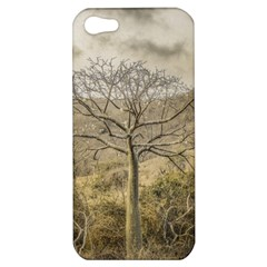 Ceiba Tree At Dry Forest Guayas District   Ecuador Apple Iphone 5 Hardshell Case by dflcprints