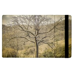Ceiba Tree At Dry Forest Guayas District   Ecuador Apple Ipad 2 Flip Case by dflcprints