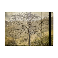 Ceiba Tree At Dry Forest Guayas District   Ecuador Apple Ipad Mini Flip Case by dflcprints
