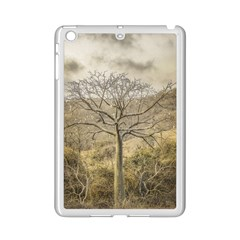 Ceiba Tree At Dry Forest Guayas District   Ecuador Ipad Mini 2 Enamel Coated Cases by dflcprints