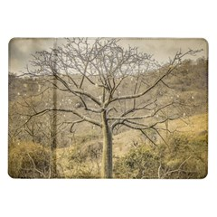 Ceiba Tree At Dry Forest Guayas District   Ecuador Samsung Galaxy Tab 10 1  P7500 Flip Case by dflcprints