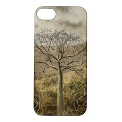 Ceiba Tree At Dry Forest Guayas District   Ecuador Apple Iphone 5s/ Se Hardshell Case by dflcprints
