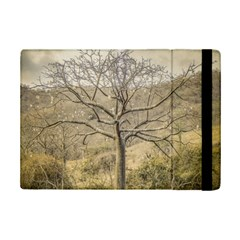 Ceiba Tree At Dry Forest Guayas District   Ecuador Ipad Mini 2 Flip Cases by dflcprints