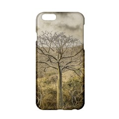 Ceiba Tree At Dry Forest Guayas District   Ecuador Apple Iphone 6/6s Hardshell Case by dflcprints
