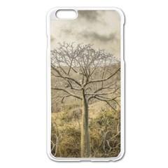 Ceiba Tree At Dry Forest Guayas District   Ecuador Apple Iphone 6 Plus/6s Plus Enamel White Case by dflcprints