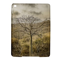 Ceiba Tree At Dry Forest Guayas District   Ecuador Ipad Air 2 Hardshell Cases by dflcprints