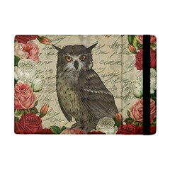 Vintage Owl Apple Ipad Mini Flip Case by Valentinaart