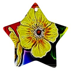 Beautiful Fractal Flower In 3d Glass Frame Ornament (star) by Simbadda