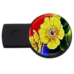 Beautiful Fractal Flower In 3d Glass Frame Usb Flash Drive Round (2 Gb) by Simbadda