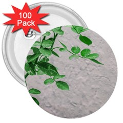 Plants Over Wall 3  Buttons (100 Pack)  by dflcprints