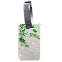 Plants Over Wall Luggage Tags (two Sides) by dflcprints