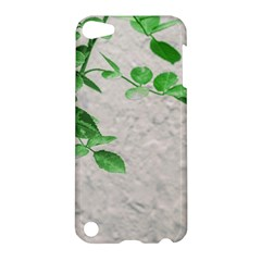Plants Over Wall Apple Ipod Touch 5 Hardshell Case by dflcprints