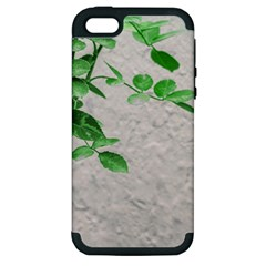 Plants Over Wall Apple Iphone 5 Hardshell Case (pc+silicone) by dflcprints