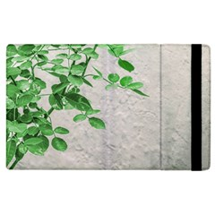 Plants Over Wall Apple Ipad 3/4 Flip Case by dflcprints