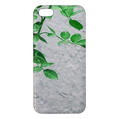 Plants Over Wall Iphone 5s/ Se Premium Hardshell Case by dflcprints