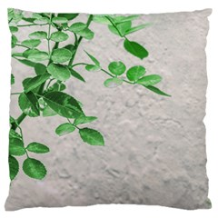 Plants Over Wall Large Flano Cushion Case (one Side) by dflcprints