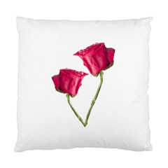Red Roses Photo Standard Cushion Case (one Side) by dflcprints