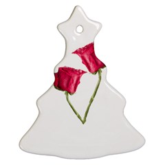 Red Roses Photo Ornament (christmas Tree)  by dflcprints
