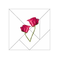 Red Roses Photo Acrylic Tangram Puzzle (4  X 4 ) by dflcprints