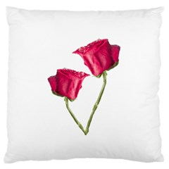 Red Roses Photo Large Flano Cushion Case (two Sides) by dflcprints