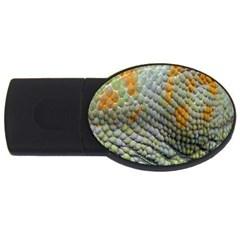 Macro Of Chameleon Skin Texture Background Usb Flash Drive Oval (4 Gb) by Simbadda